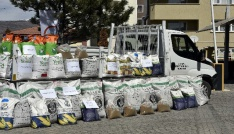 Gümüşhane çiftçisine 68 tonluk tarihi tohum desteği