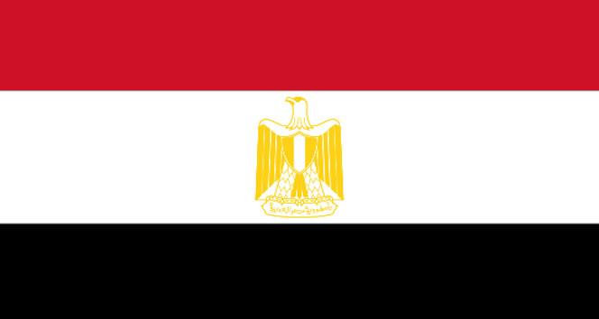 Mısırda 3 aylık olağanüstü hal ilan edildi