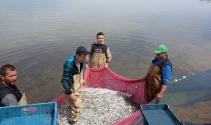 Bursa İznik Gölü'nde gümüş balığı sezonu açıldı