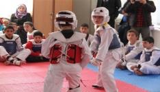 Taekwondo yıldızlar il birinciliği yapıldı