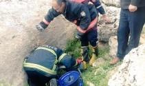 Kayanın altına sıkışan kaplumbağayı itfaiye ekipleri kurtardı