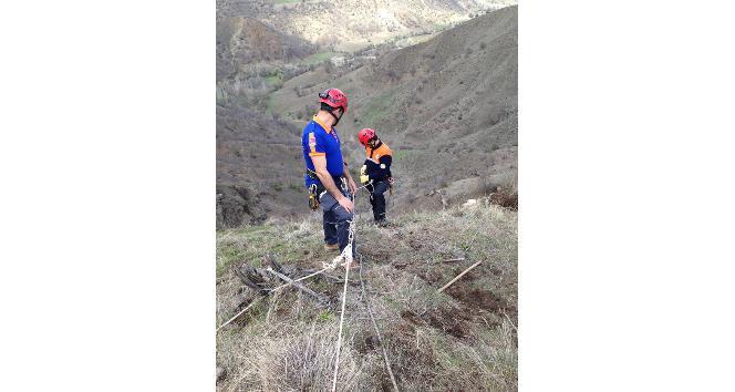 Kayalıklarda mahsur kalan keçileri AFAD kurtardı
