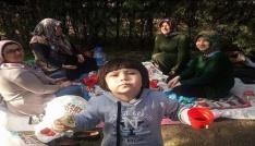 Bolvadinde oy kullananlar soluğu piknik alanlarında aldı