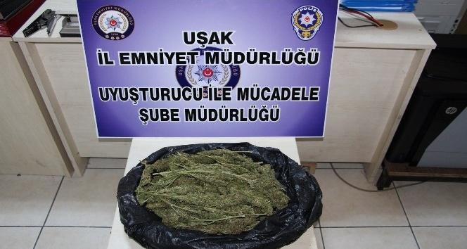 Uşakta uyuşturucu operasyonu