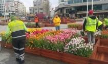 Taksim Meydanı lalelerle süslendi
