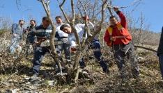 Bitliste 10 bin bıttım ağacı aşılanacak