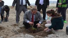 Adilcevazda 150 aşılı ceviz fidanı toprakla buluştu