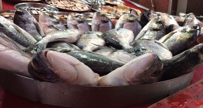 Deniz balıklarındaki yüksek fiyatlar kültür balıklarını da etkiledi