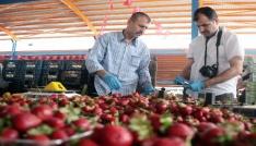 Adanada pazarcıların mal çalma kavgası: 1i ağır 5 yaralı