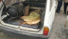 Beyşehirde elektro şok ile avlanan balıklar ele geçirildi