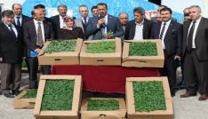 Elazığda çiftçilere çeşitli bitkiler dağıtıldı
