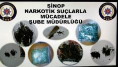 Sinopta uyuşturucu operasyonu: 11 gözaltı