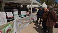Sinopta Yöresel Ürünler Festivali başladı