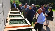 Osmaniyede 193 bin 700 adet sebze fidesi dağıtıldı