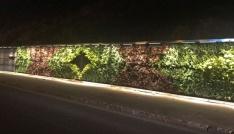 Mardindeki Dikey Bahçe ışıklandırıldı