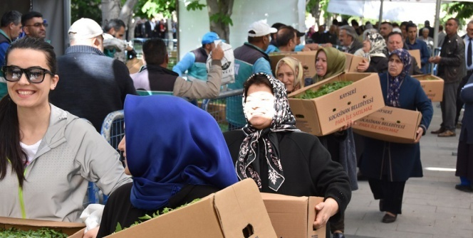 Vatandaşlar belediyenin dağıttığı domates fidelerine akın etti