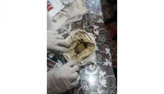 Bingölde uyuşturucu operasyonu: 7 gözaltı