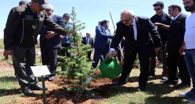 Bingölde 15 Temmuz Demokrasi Şehitleri Hatıra Ormanı oluşturuldu