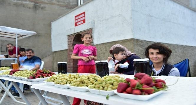 Dulkadiroğlu Belediyesinden Dut Satış Noktası