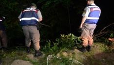Otomobil 25 metrelik uçuruma yuvarlandı: 1 yaralı