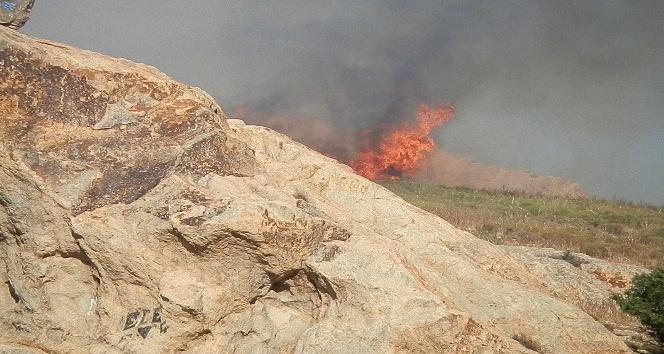 Foça'da makilik alanda yangın