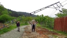 Yaylacılar devrilen elektrik direkleri ve yolları için yardım bekliyor