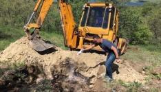 Tuncelide telef olan hayvanlar gömüldü