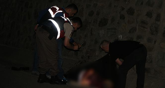 Sakaryada yol kenarında kanlar içerisinde bir ceset bulundu