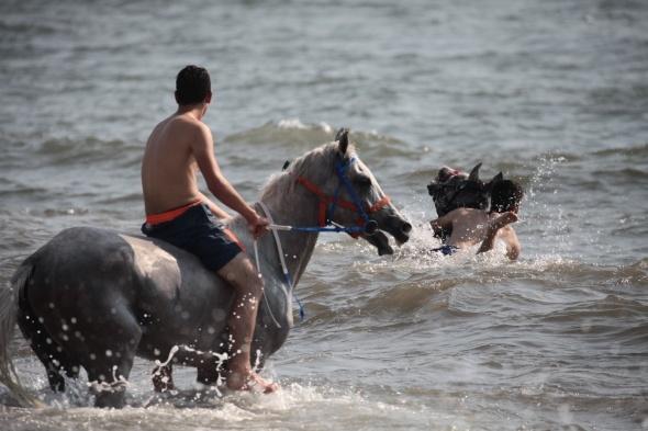 At sırtında deniz keyfi