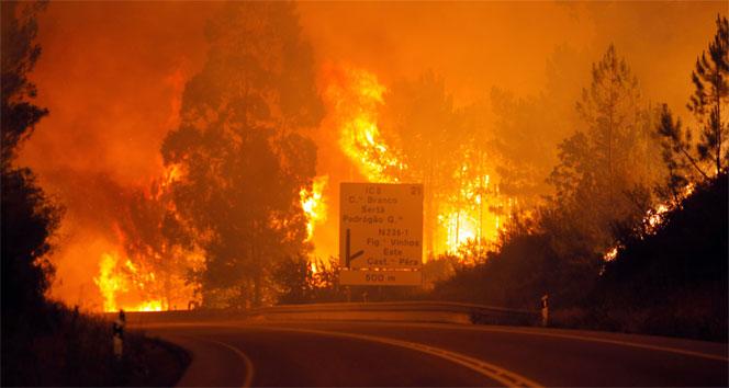 Portekiz'deki Yangında 25 Kişi Öldü, Köyler Tahliye Edildi