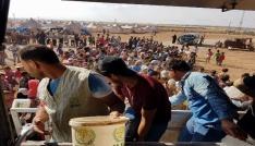 İHHdan Zoğara Kampındaki Suriyelilere 10 bin kişilik iftar
