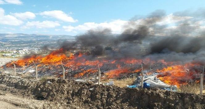 Hurdalıkta yangın