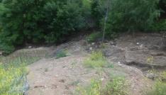 Torulda dolu yağışı tarım arazilerine zarar verdi