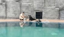 Bursa Hayvanat Bahçesi'nin yeni misafirleri ilgi çekiyor