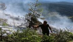 Ormanda çıkan yangında 15 dönümlük alan kül oldu