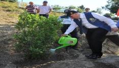 """Osmaniyede """"15 Temmuz Demokrasi Şehitleri Hatıra Ormanı"""" oluşturuldu"""