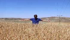 (Özel haber) Buğdayda korkulan olmadı.