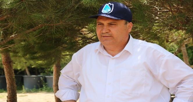 Başkan Çerçiden sökülen ağaçlarla ilgili açıklama