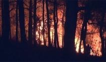 İzmirin Bayındır ilçesindeki yangın 18 saattir devam ediyor