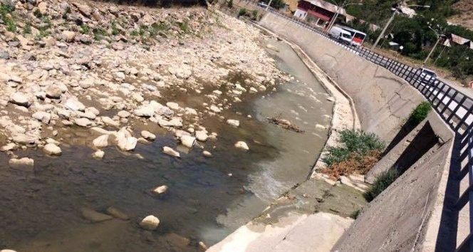 Harşit Çayı çimento atıkları ile kirletiliyor, balıklar ölüyor