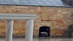 Yağmurdan kaçan vatandaş camiye sığındı