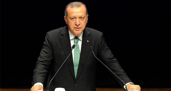 Erdoğandan Almanyadaki Türklere flaş çağrı!
