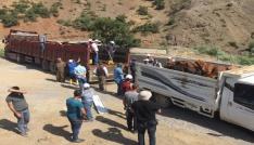 Beytüşşebapta 25 genç çiftçinin projesi kabul edildi