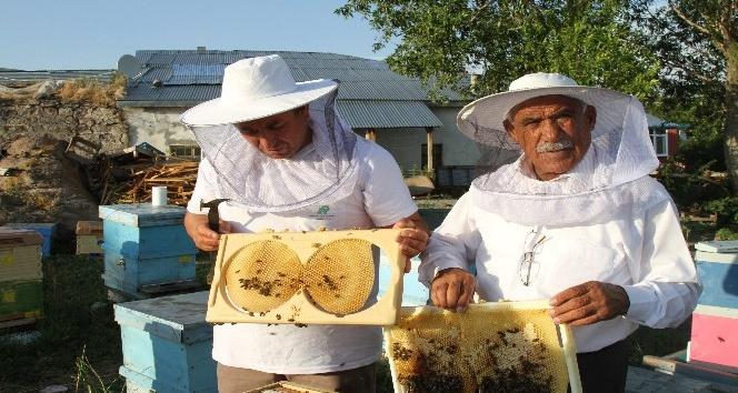 Coğrafi işaret alan Ardahan Balı, dünya pazarına sunulacak