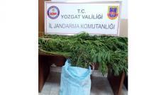 Yozgatta uyuşturucu operasyonu