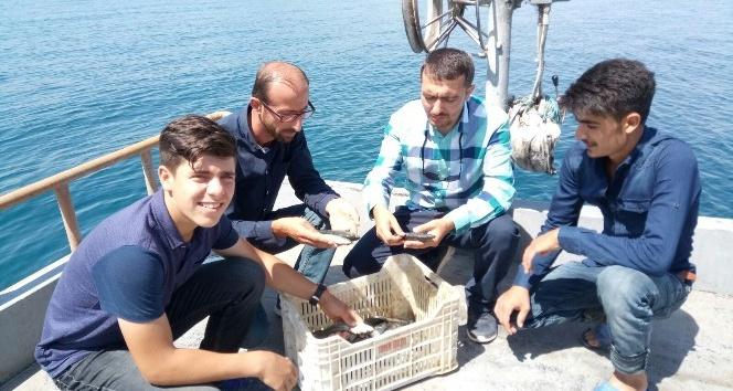 Balıkçılar, kaçak avcıların mağduru oldu