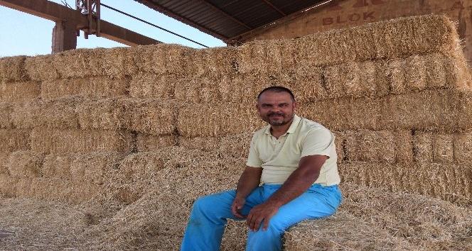 Süt üreticilerinden saman uyarısı