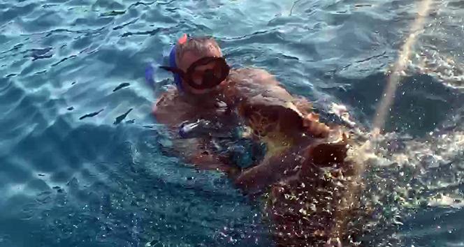 Denizciler Derneği Başkanı caretta caretta saldırısına uğradı