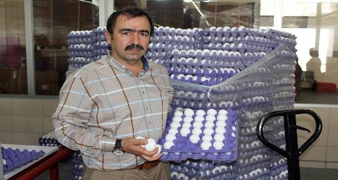 """(Özel Haber) Yum-Bir Başkanı Afyon: """"Türk yumurtasında zehir yok"""""""