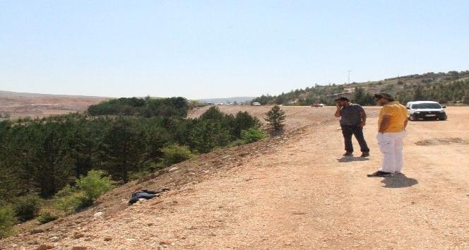 Konya'da yol kenarında başından vurulmuş erkek cesedi bulundu